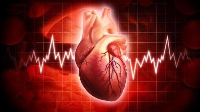 Trái tim phụ nữ đập nhanh hơn trái tim đàn ông