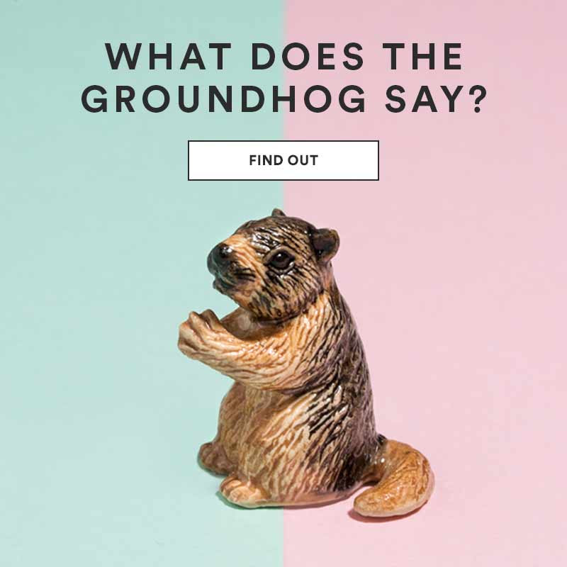 Groundhog Day - Extra 50% off Set