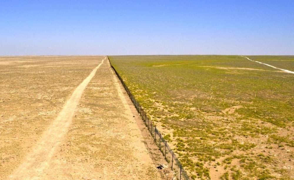 The edge of an experimental sheep grazing exclusion zone (to the right) within Al Talila Reserve, Palmyra, photographed in March 2008 in the midst of an intense drought period. Sheep quasi uncontrolled grazing was allowed to the left of the fence. Grazing