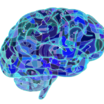 brain-951874_960_720 (1)