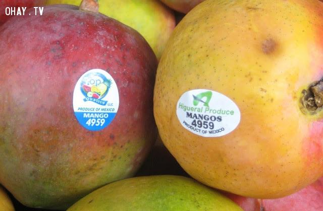 Mã PLU có 4 chữ số và bắt đầu bằng số '4' ,mã số,trái cây nhập ngoại,tem nhập khẩu,ý nghĩa,an toàn thực phẩm