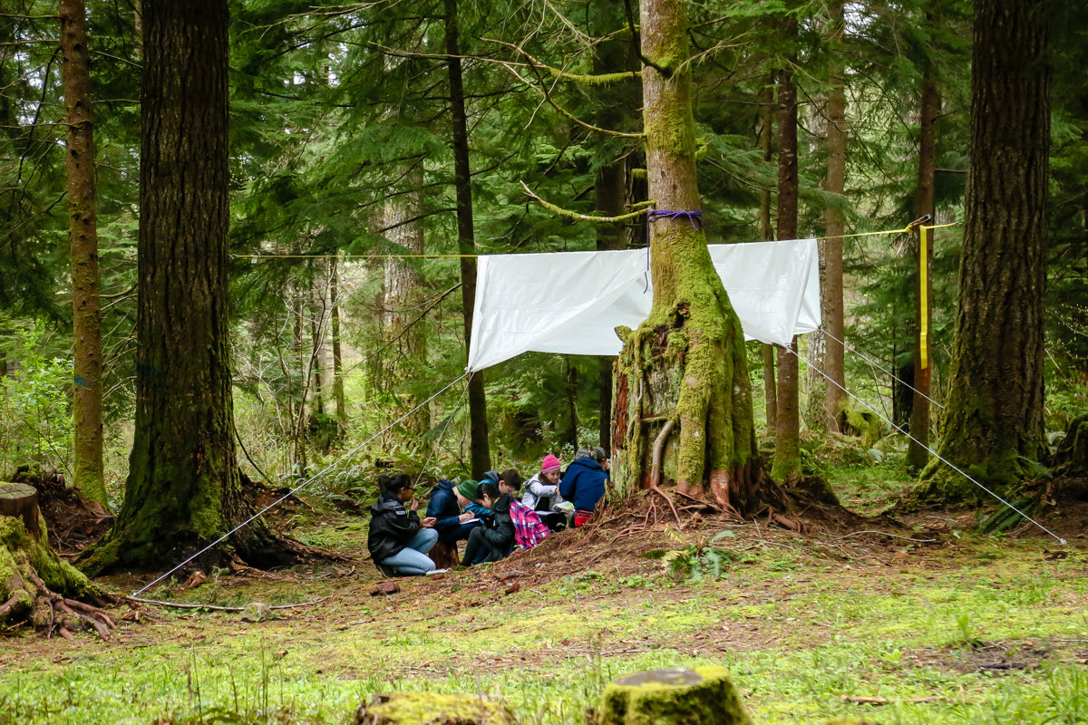 Kids sitting under a tarp in the woods