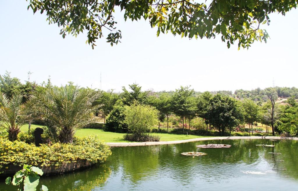 Công viên và hồ cảnh quan