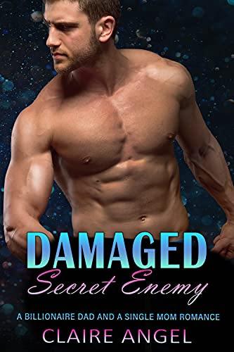 Cover for 'Damaged Secret Enemy'