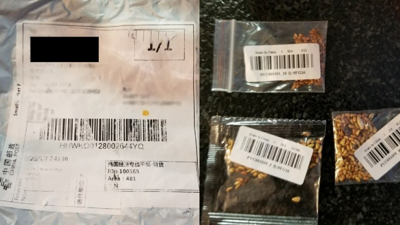 Mysterious packages of seeds that no one ordered are being sent from China ll around the world.