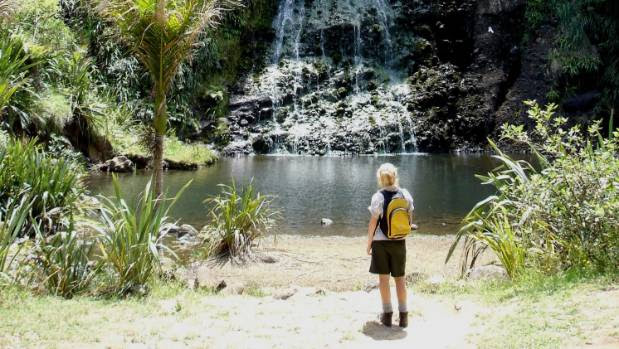 AA members rate the Karekare Falls the best swimming hole in New Zealand. A 30 minute bush walk will get you there.