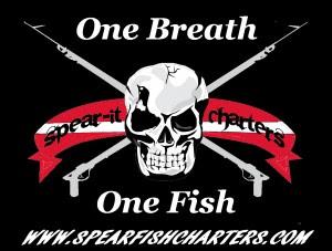 pngOnefish-onebreat-BACKtest