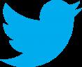 Twitter_logo1-369x300