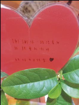 黎明喜樂誌159期【在逆境中盛開的花】