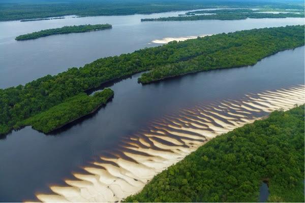 Parque_Nacional_da_Amazonia_menor._Foto-_Marcos_Amend_Fundacao_Grupo_Boticario..jpg