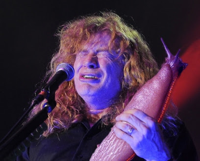 slug Dave Mustaine of Megadeth