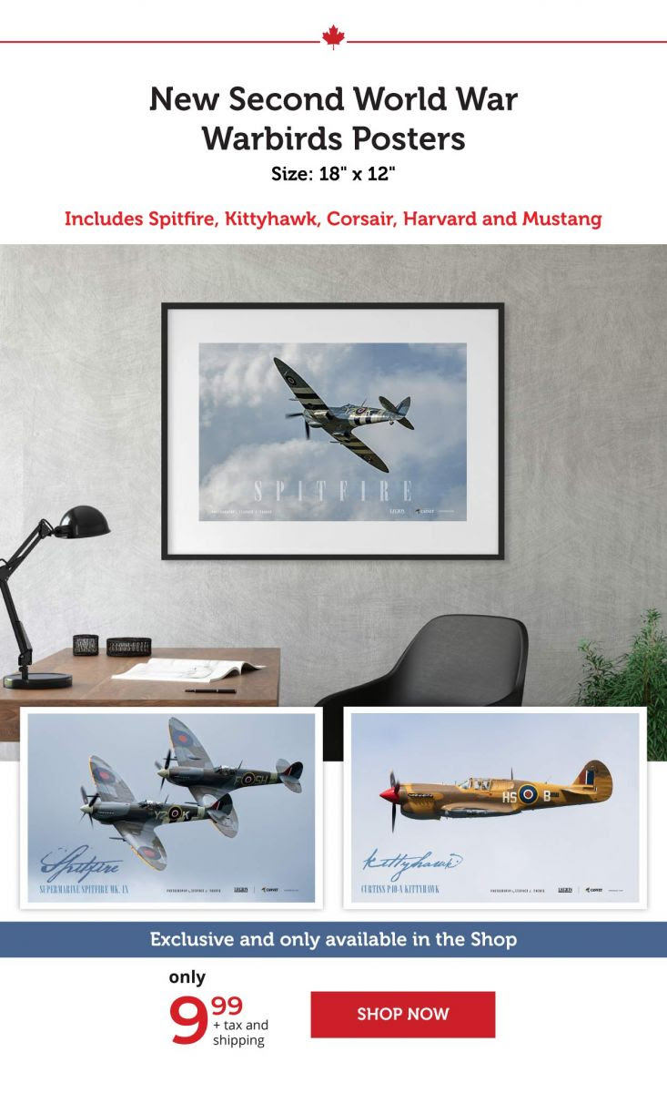 Warbirds Posters!