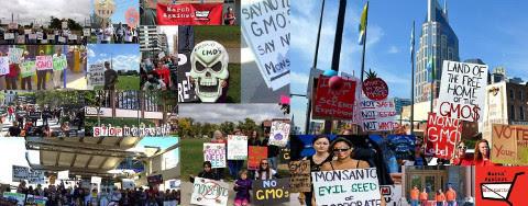 March Against Monsanto ~ 5/20/2017 2617941473e93093566ba994def6aaa3be5636ef2d1b6b97b2b00a600a7655bc8bef7f3128a5e9bae10e6d62307b2ad83902f51d4ab41f63e6b6e2673277d108