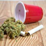 Solo Cup Marijuana
