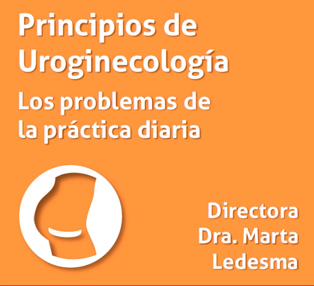 Curso Uroginecologia