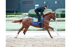 Improbable gallops March 14 at Oaklawn Park