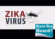 graphic that says Zika virus