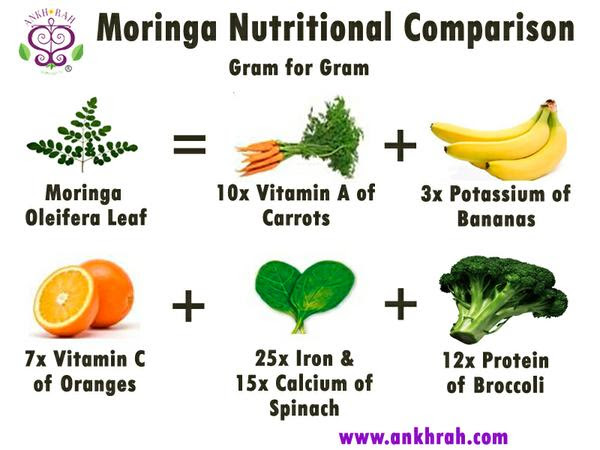 moringa nutritional comparison