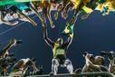 """Bild: """"obs/kicker-sportmagazin/Sebastian Wells"""""""