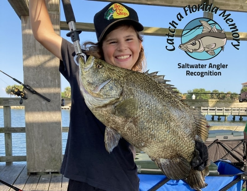 tripletail caught by William Lux