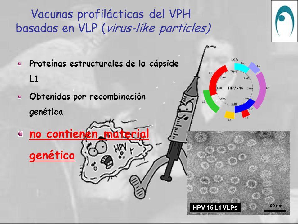 Resultado de imagen de vacuna VPH y estación
