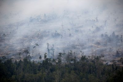 Smoke covers forest during fires in Kapuas regency near Palangka Raya in Central Kalimantan province, Indonesia, 30 September 2019 (Photo: Reuters/Willy Kurniawan).