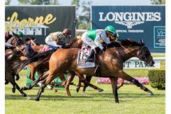 Spring Quality earns a 126 Equibase Speed Figure in the Manhattan Stakes at Belmont Park