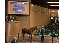 The Dialed In colt consigned as HIp 2767 in the ring during the Keeneland November Sale
