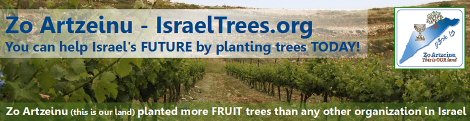 trees banner 1