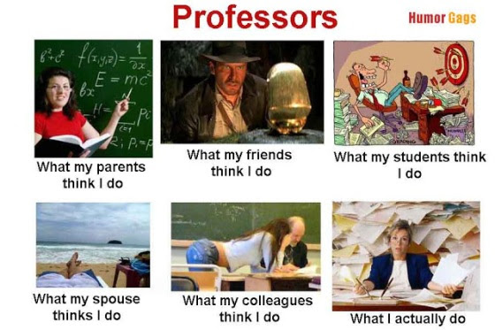 professor-works-funny.jpg