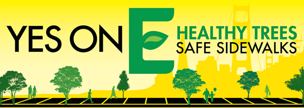 Coalition for Healthy Trees and Safe Sidewalks