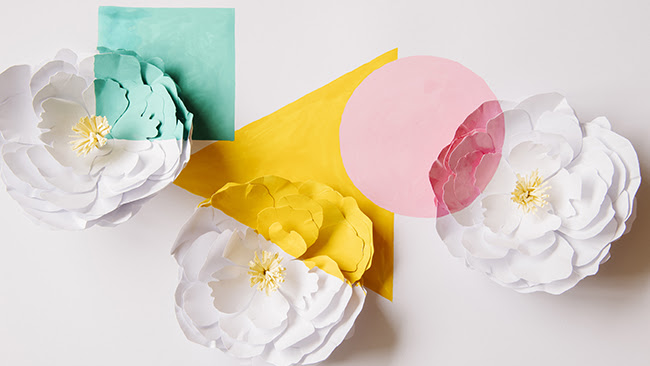 white flowers with colorful shapes