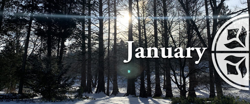 What's Happening in January?