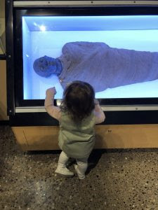 My little archaeologist