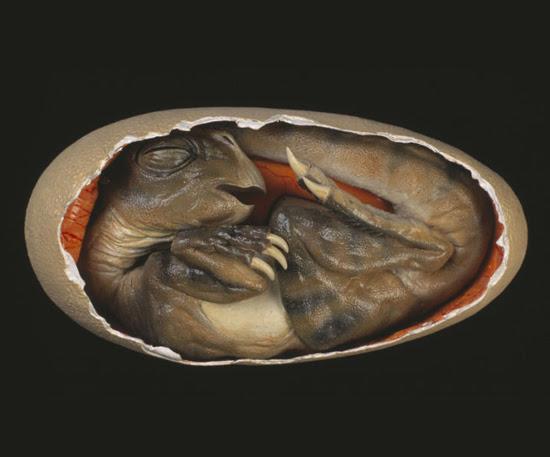 Hatch-a-saurus