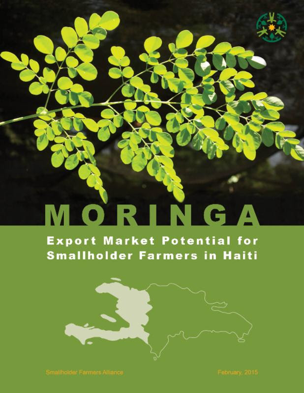 Moringa: Export Market Potential for Smallholder Farmers in Haiti