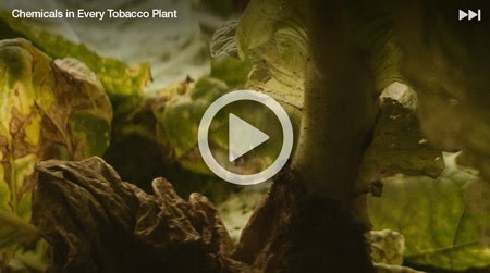 Chemicals Video Image_1