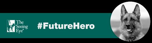 Future Hero Sarge Banner