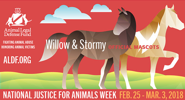 National Justice for Animals Week