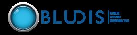 Bludis - Divisione di Spin Srl