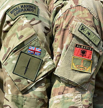 The Commando Flash and dagger worn on the sleeve
