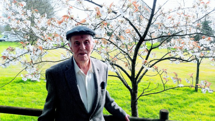 Frank Hurlbutt with Cherry Blossom