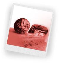 Haxixe é uma resina cor de canela, marrom ou preta que é seca e apertada em formato de barras, pauzinhos ou bolas. Quando fumados, tanto a maconha como o haxixe exalam um aroma doce e distinto.