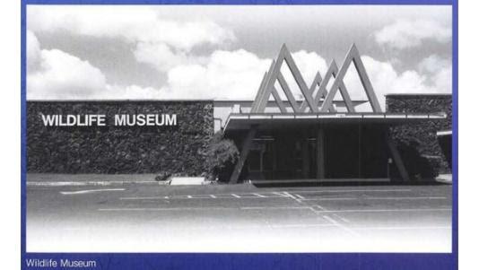 1992年にハワイにあった実際の「WILDLIFE MUSEUM」の外観  (国立科学博物館)