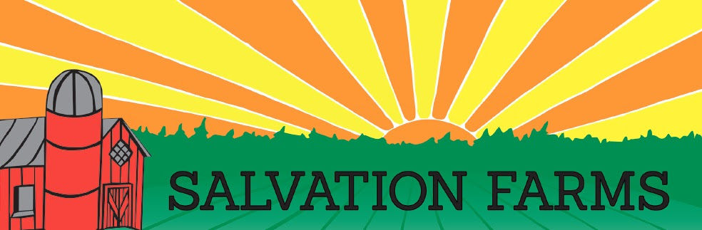 Salvation Farms continues its search for new team members! (VT)