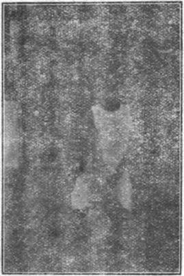 """""""八極拳"""" 繆 淦 傑 (1936) - foto 1.6"""