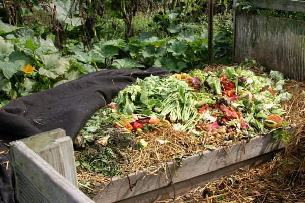 composting in place