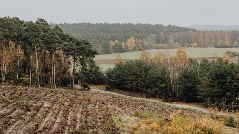 Agroforestry Education Program