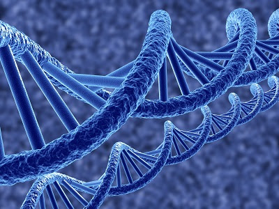 Gene theapy ot treat heart disease