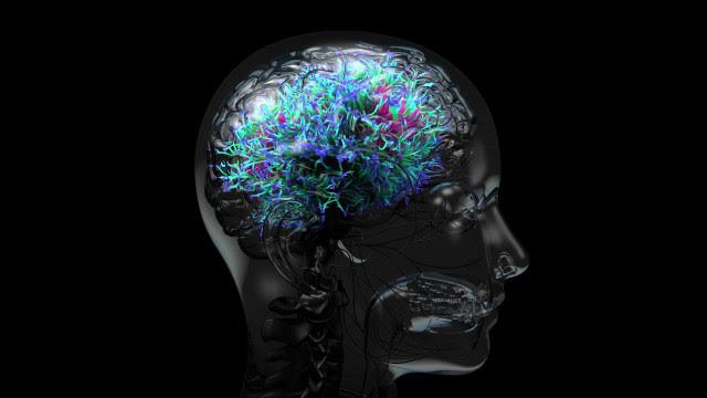 Estudo: 73% dos doentes internados com Covid-19 grave têm alucinações